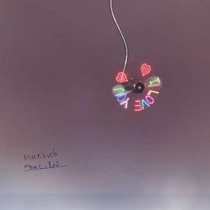 Bilderbuch - mea culpa, Album Cover